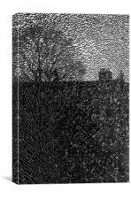 View through a broken window, Canvas Print