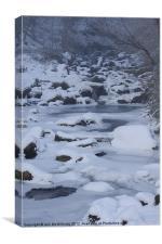 Frozen Stream, Canvas Print