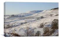 Campsie in the Snow, Canvas Print