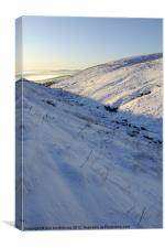 Campsie Snow, Canvas Print