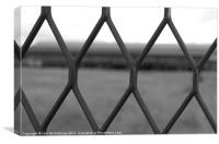 Fence Mesh, Canvas Print