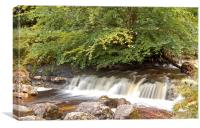 Campsie Waterfall, Canvas Print