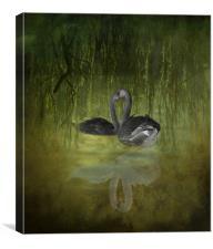 Swan Fantasy, Canvas Print