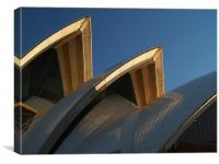 Opera House Roof, Canvas Print