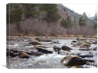 St Vrain river 5725, Canvas Print
