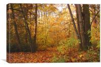 Autumnal, Canvas Print
