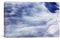 Ski trails, Canvas Print