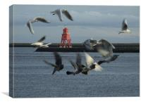 Gulls and Harbour light  041207