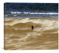 Coast - Windswept , Canvas Print