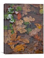 Frozen Autumn Leaves, Canvas Print