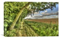 Country Footpath, Canvas Print