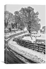 Winter Falls, Canvas Print