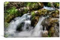 Natures Flow, Canvas Print