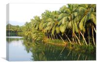 KERALA BACKWATER COCONUT LAGOON GREENERY , Canvas Print