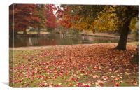Valence Park  Autumnal, Canvas Print