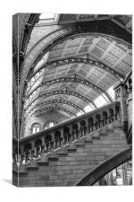 Natural History Museum Kensington, Canvas Print