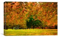 Green Park autumn London, Canvas Print