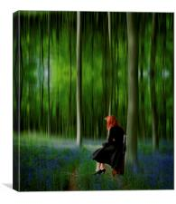 Red Head in Blue Bell wood  Art Digital art, Canvas Print