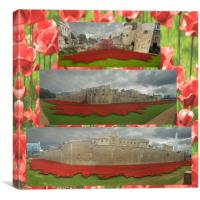 Poppies Tower of London collage , Canvas Print