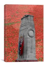 Cenotaph Poppies Whitehall  , Canvas Print