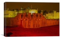 Poppies Tower of London night  , Canvas Print