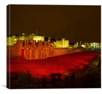 Poppies Tower of London night, Canvas Print