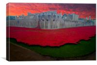 Poppies Tower of London  , Canvas Print
