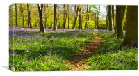 Chalet Bluebell Woods, Canvas Print