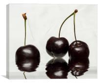 Fresh Cherries, Canvas Print