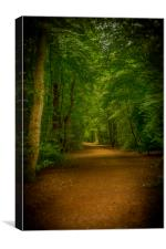 Epping Forest Walk, Canvas Print