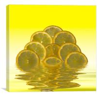 Slices Lemon Citrus Fruit, Canvas Print