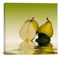 Fresh Pears Fruit, Canvas Print