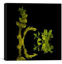 Celery Trees, Canvas Print
