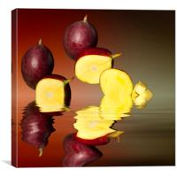 Fresh ripe mango fruits, Canvas Print