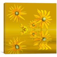 Rudbekia Yellow flowers, Canvas Print