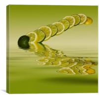 Slices Lemon Lime Citrus Fruit, Canvas Print