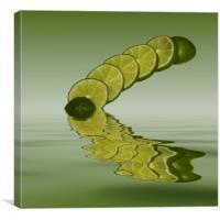 Slices Lime Citrus Fruit, Canvas Print