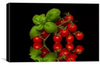 Cherry Tomatoes and Basil, Canvas Print