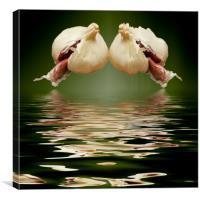 Garlic cloves of Garlic, Canvas Print