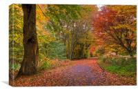 Epping Forest HRD version, Canvas Print