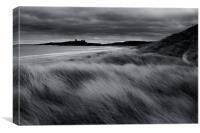 Dunstanburgh Dunes, Canvas Print