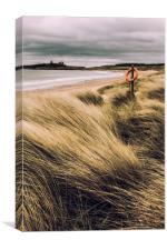 Dunes at Dunstanburgh, Canvas Print