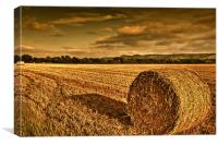 Straw bale in Susex