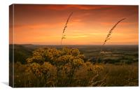 Sunset at Devils Dyke, Sussex, Canvas Print