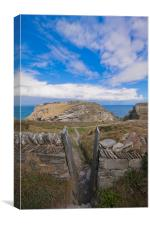 Tintagel cliffs, Cornwall, Canvas Print