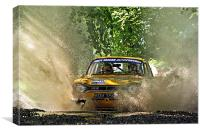 Ford Escort Rally Car, Canvas Print