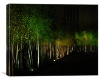 Trees at night , Canvas Print