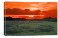 Sun-set over the New Forest, Canvas Print