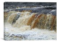 Aysgarth Falls , Canvas Print