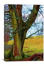 a bright tree, Canvas Print